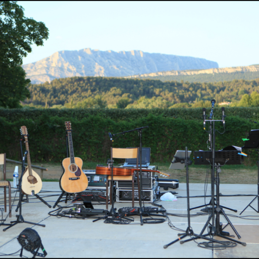 Blues Roots Festival au Domaine Valbrillant de Meyreuil